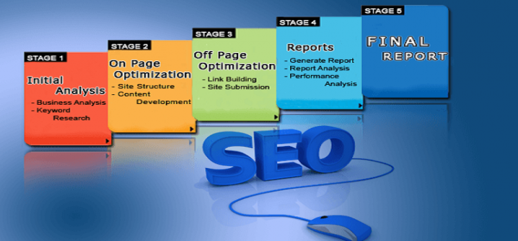 Importance of a SEO Course From Business Perspective